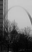 17th Dec 2014 - (Slim) Foggy