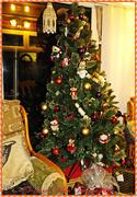 18th Dec 2014 - Christmas Tree