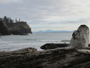 19th Dec 2014 - Cape Disappointment 1