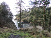 16th Dec 2014 - Cape Disappointment 2