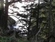 12th Dec 2014 - State Park Cove
