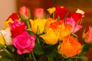 19th Dec 2014 -  Rose Bouquet