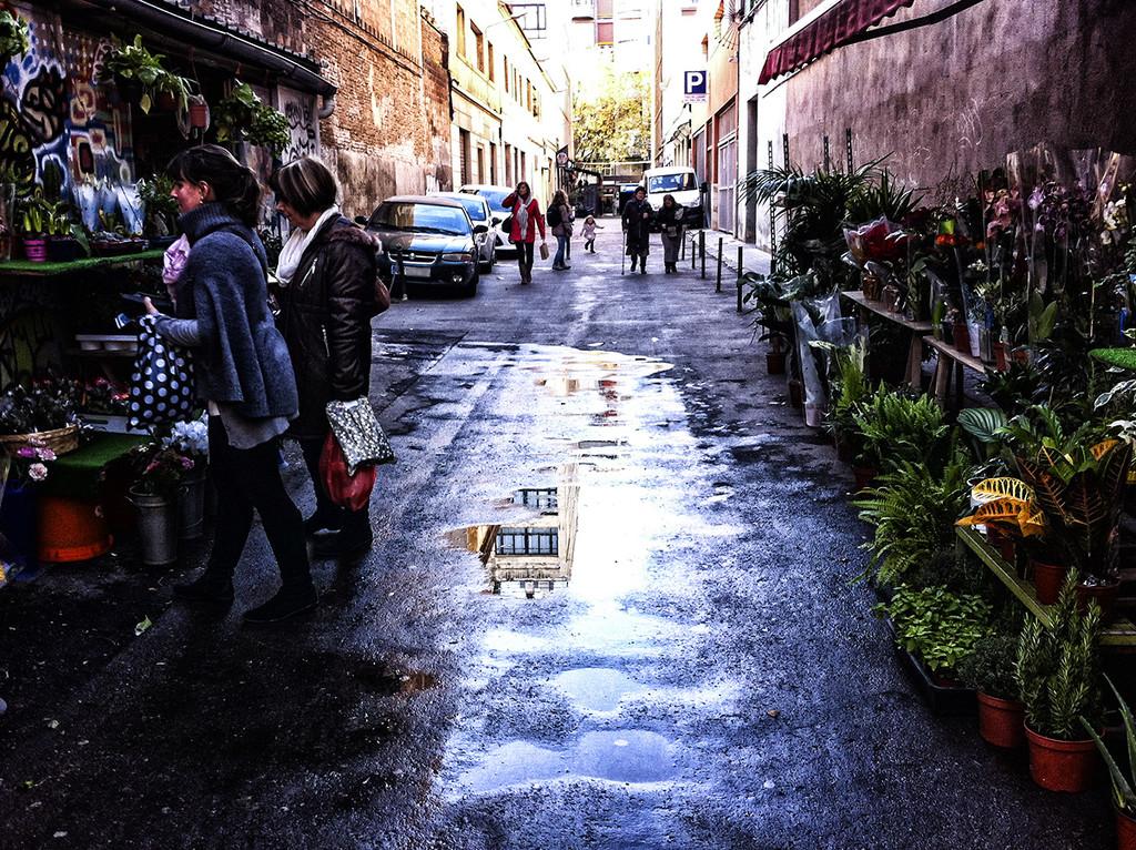 Green Alley by jborrases