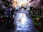 20th Dec 2014 - Green Alley