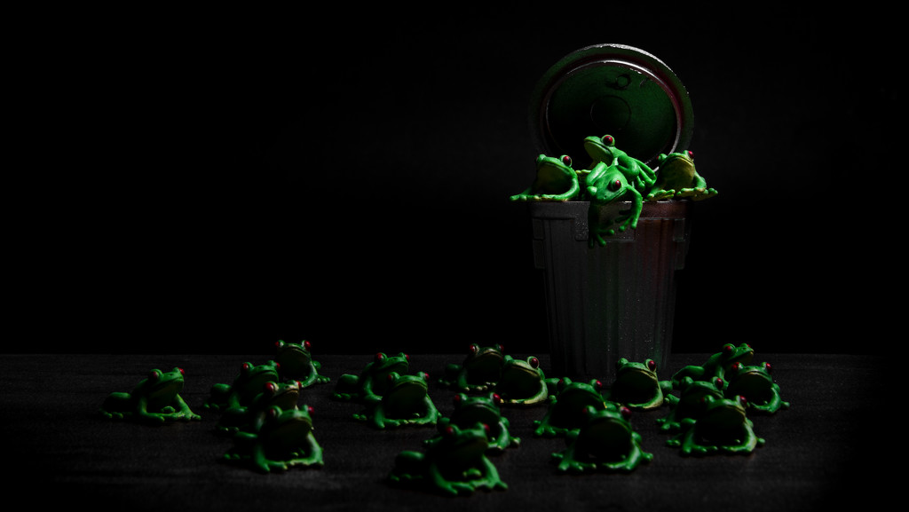 mad as a box of frogs by northy