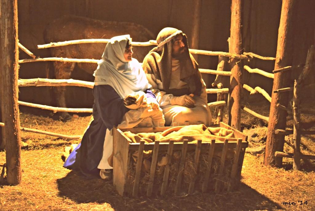 Living Nativity by mhei