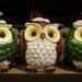 Holiday 21 - Christmas owls