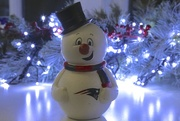 "22nd Dec 2014 - ""Frosty the Snowman, was a Patriot they Say!"""