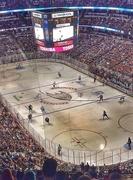 22nd Dec 2014 - Ducks 3; Sharks 2