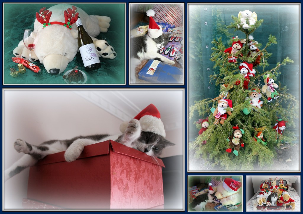 Beary Catful Christmas Collage by gilbertwood