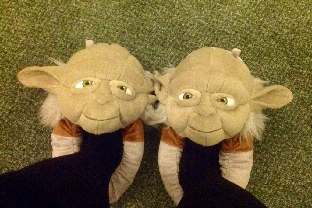 Amazing slippers they are! by chris17