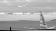 24th Dec 2014 - Leaving on a Jet Plane