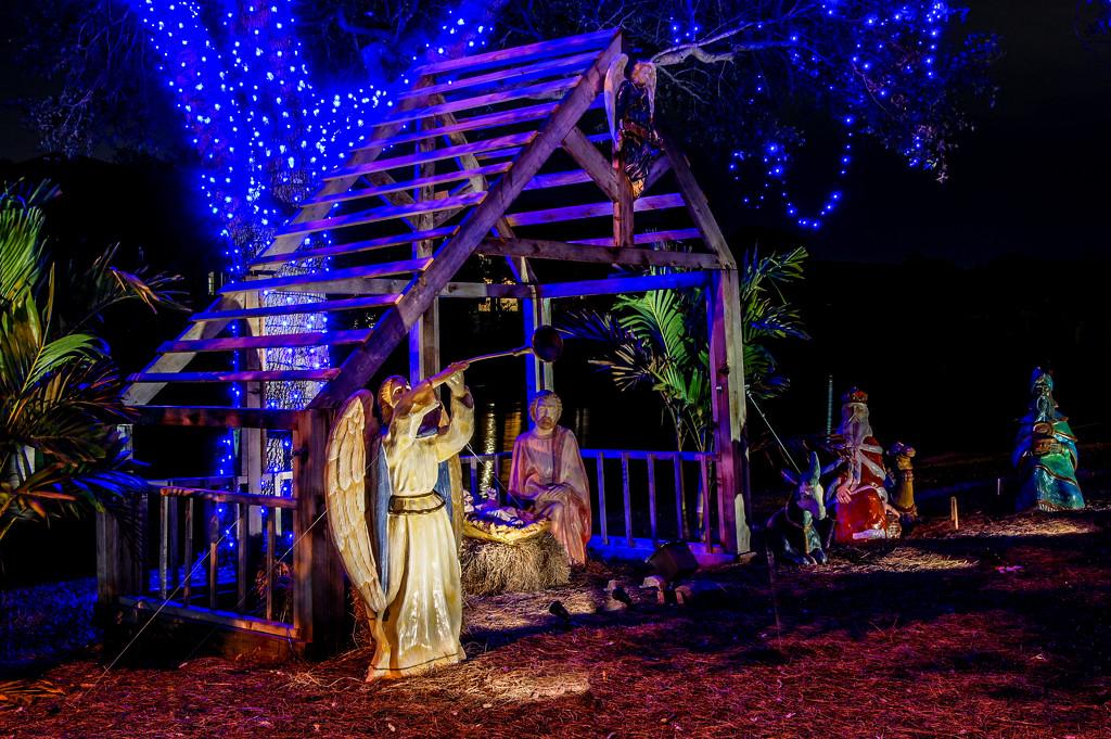 Nativity by danette