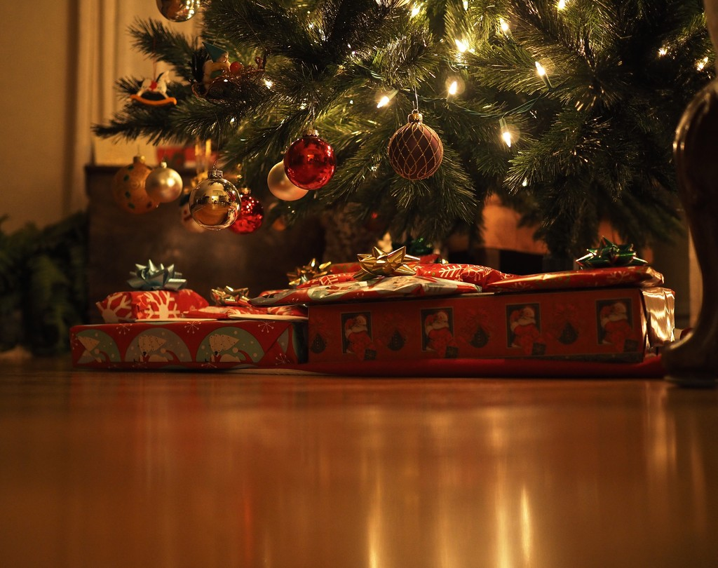 Santa Just Left... by rosiekerr
