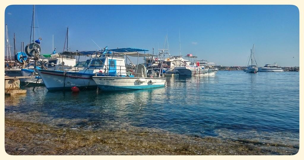 Paphos Harbour, Cyprus  by carolmw