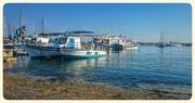 26th Dec 2014 - Paphos Harbour, Cyprus