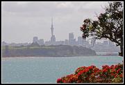 27th Dec 2014 - City views