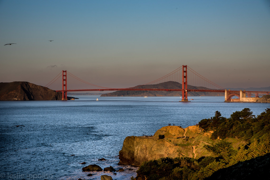 Nothing says San Francisco like The Golden Gate Bridge by lesip