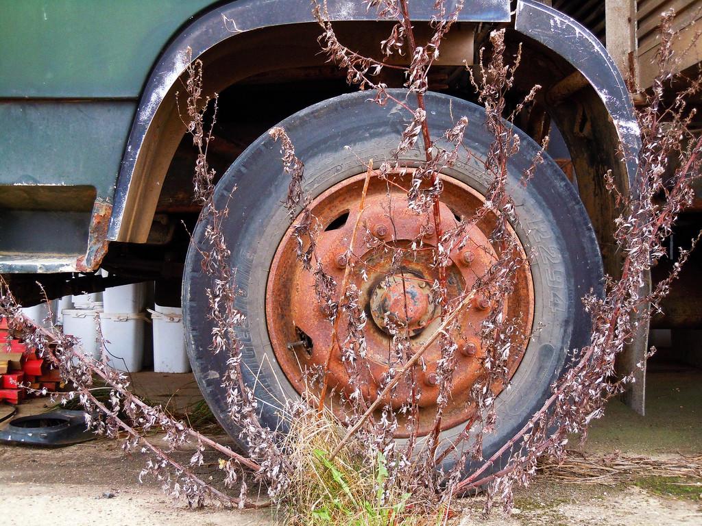 Abandoned truck by pistonbroke