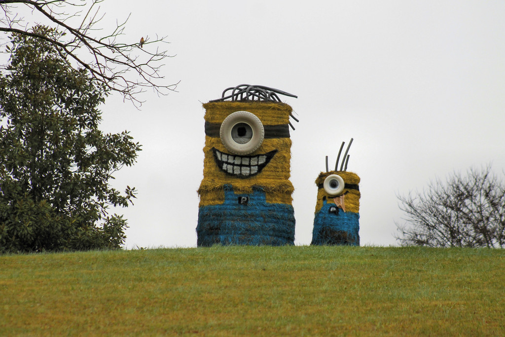 Hay!  I see minions! by cjwhite
