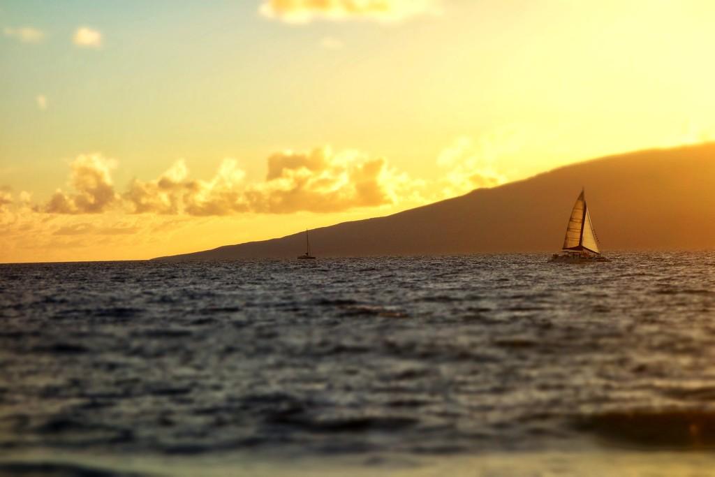 Sail... by cocobella