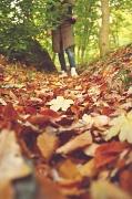 26th Oct 2010 - Autumn walks