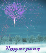 31st Dec 2014 - Happy new Year to all of my 365 friends!