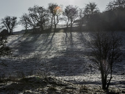 1st Jan 2015 - Happy New Year from Croft Hill