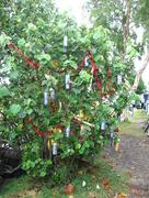 27th Dec 2014 - The Cheapest Ornaments Around...
