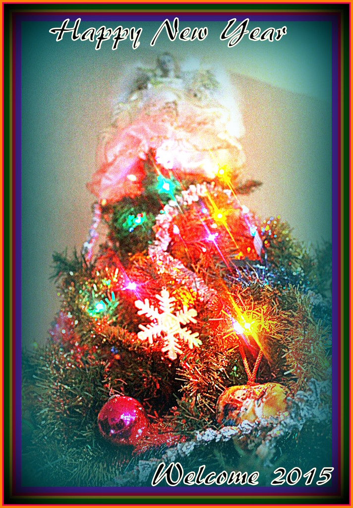 Happy New Year by vernabeth