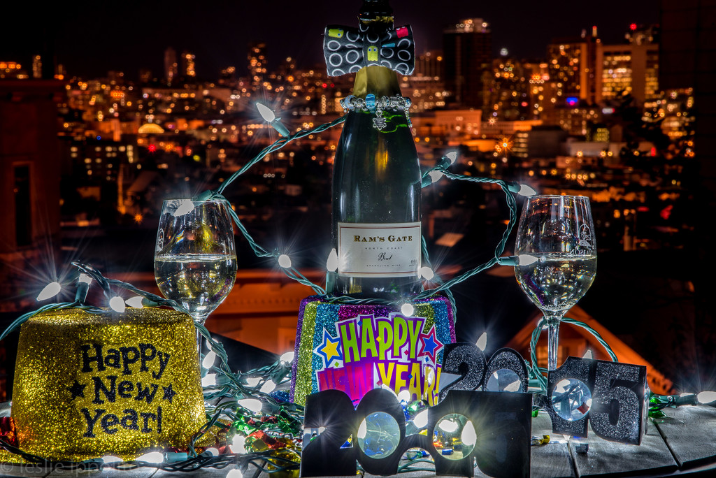 Happy New Year My 365 Photo Buds  by lesip