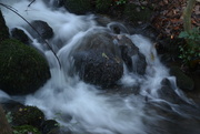 1st Jan 2015 - The Babbling Brook