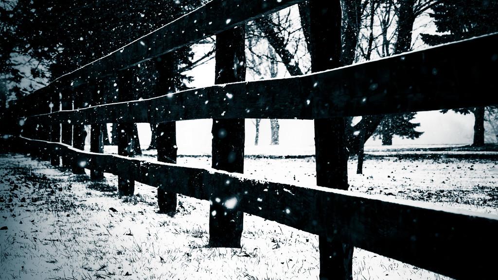 fency by northy