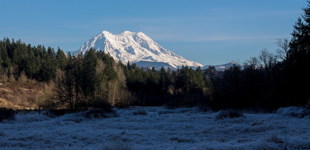 Mt Rainier from Ohop Valley 01Jan15 by jankoos