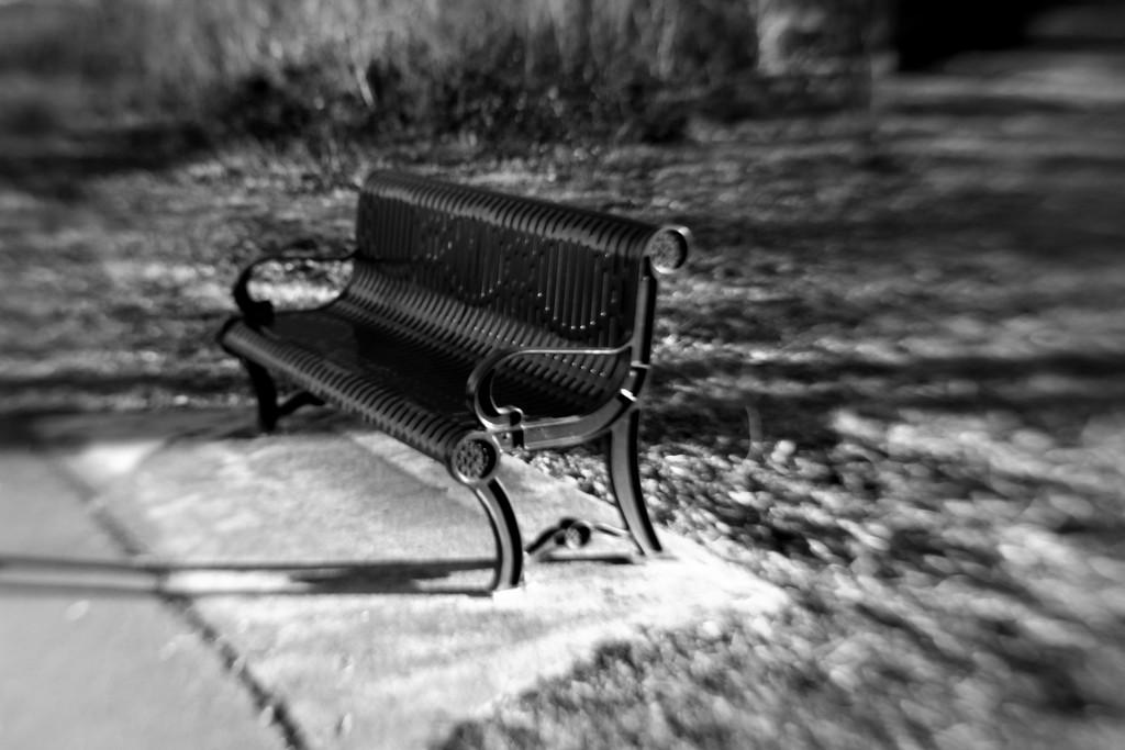 Bench (lensbaby) by nanderson
