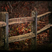 Follow the Fence line by nanderson