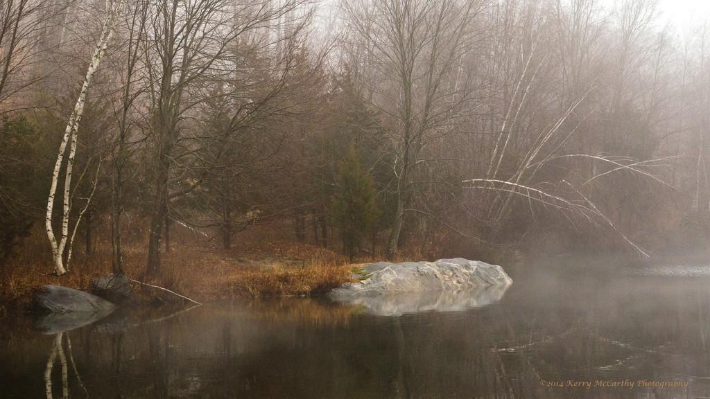 Warm foggy day by mccarth1