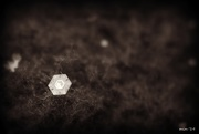 6th Jan 2015 - Hexagon Snowflake