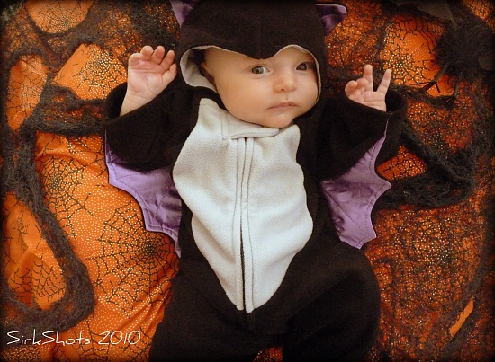 Baby Bat by peggysirk