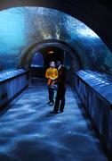 10th Jan 2015 - Wonder in the Undersea Tunnel