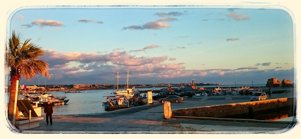 Bathed In Evening Sunlight, Paphos Harbour, Cyprus  by carolmw