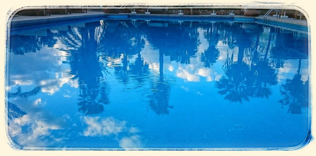 Poolside Reflections  by carolmw