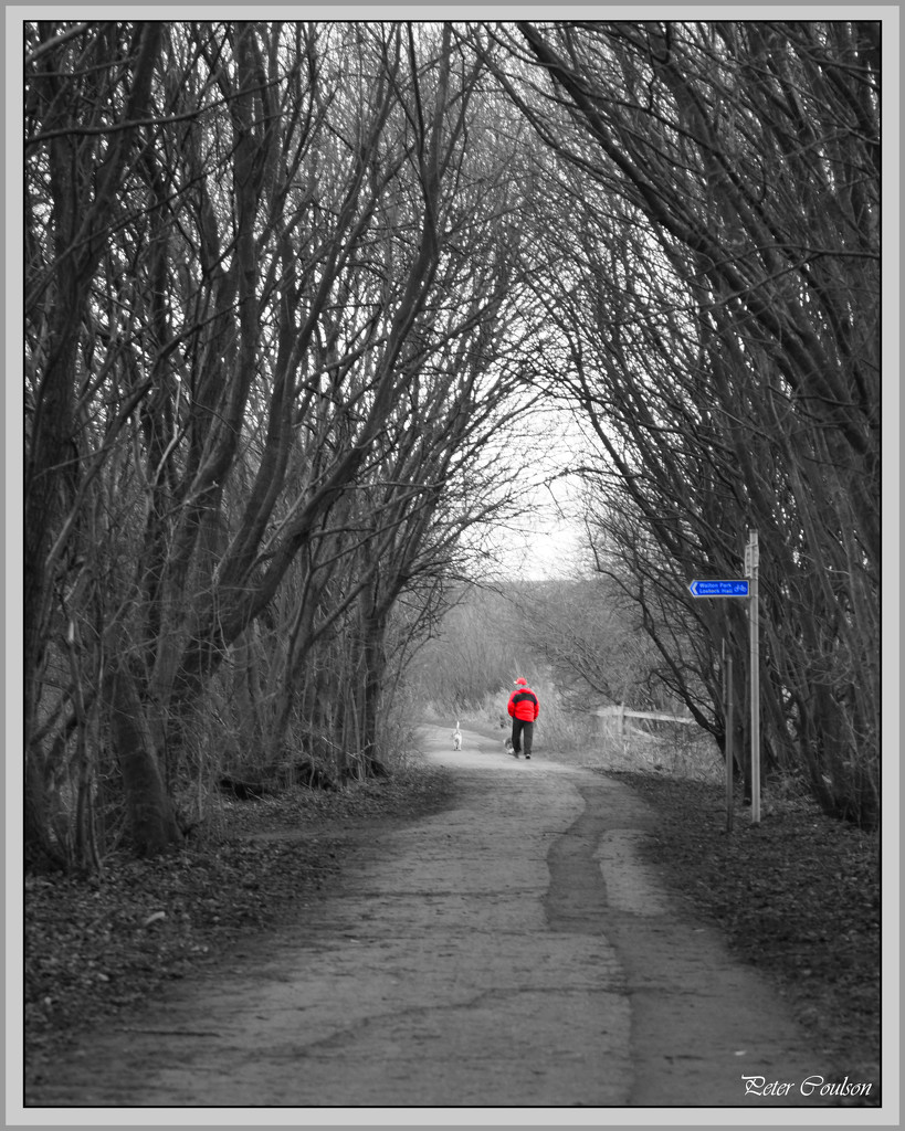 Red Jacket by pcoulson