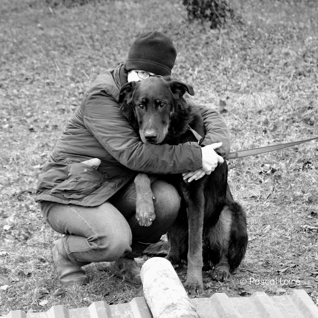 you can be a cat lady and enjoy a cuddle with a big lovely dog! by parisouailleurs