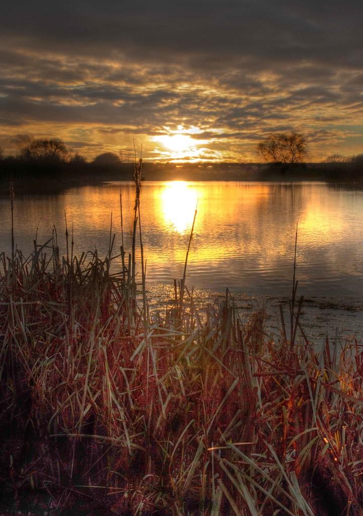 Swanwick Lake by shepherdmanswife