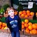 Some Smashing Pumpkins by rich57