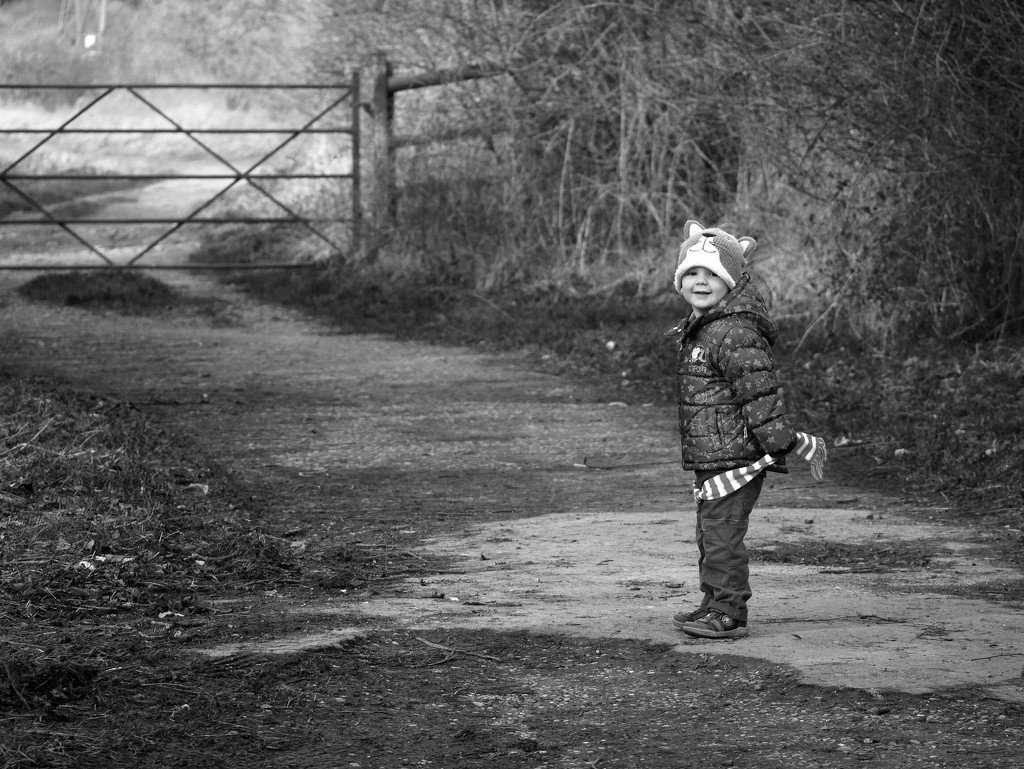 Out for a walk and not a photo shoot..... by newbank