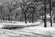 13th Jan 2015 - The Silence of Winter