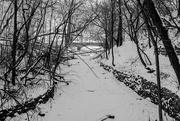 15th Jan 2015 - Minnehaha Creek and Bridge