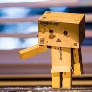 15th Jan 2015 - 2015 01 15 - Danbo is Disappointed